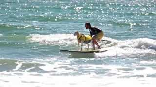 Pismo The Kid: The Big Wave Surfing Goat