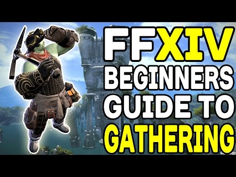 Final Fantasy XIV: A Beginners Guide To Gathering !!