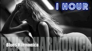 Blues Harmonica and Harmonica Blues: About Last Night Full Album