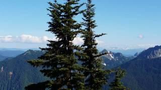 The view. Mt Rainier from Dege Peak, Sunrise area.
