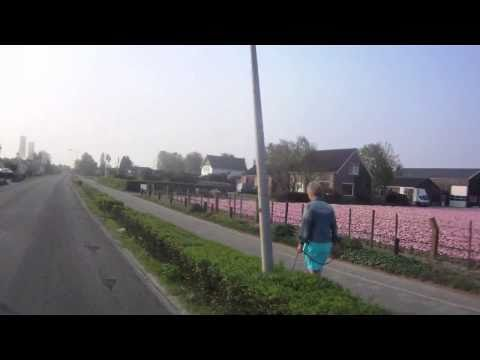 Holland Motorbike Tour: The Dutch Flowers Area