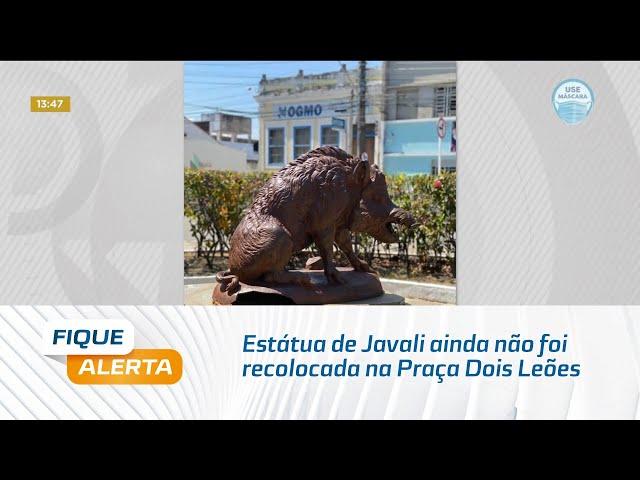 Estátua de Javali ainda não foi recolocada na Praça Dois Leões, no bairro de Jaraguá