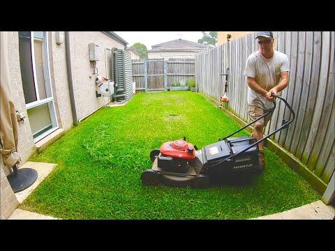 Lawn Mowing A Small Backyard Honda Lawn Mower Stihl Trimmer Blower