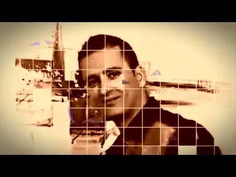 Na svadbama svi će pjevati ovaj novi HIT ! Damir Sabic Fazla - Ja se zenim nek se zna (VIDEO)