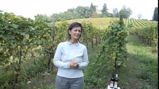 Intervista a Elena Bonelli proprietaria dell'azienda «F.lli Bonelli»