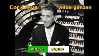 cor steyn - wilde ganzen (1965)