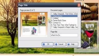 Web Easy SEO (Part 1 of 6)  Adding Descriptive Page Titles