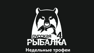 Недельные трофеи Русская Рыбалка 4 30 01