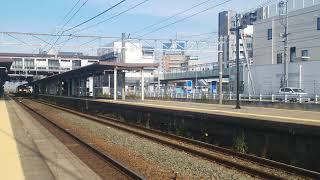 2019.11.7JR東日本新型特急E261系 Saphir ODORIKO甲種輸送 臨8862レEF210-6号機(岡)牽引