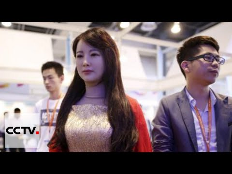 Shanghai Int'l Tech Fair: 1st interactive humanoid robot in China unveiled