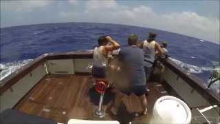 Giant Black Marlin Fishing - Little Audrey 2015 Osprey Reef