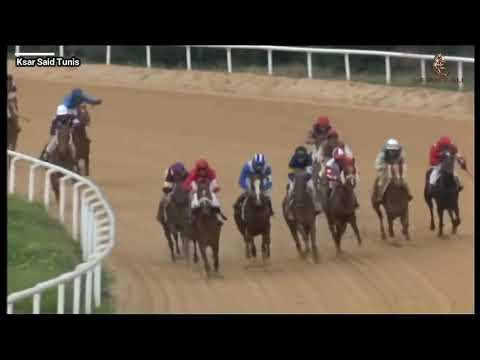 PRIX DE BARDO (C) 2019 Vainqueur Joumana. thumbnail