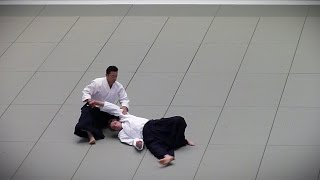 Download Video Aikido - Sugawara Shigeru Shihan - 51st All Japan Aikido Demonstration 2013 HD MP3 3GP MP4