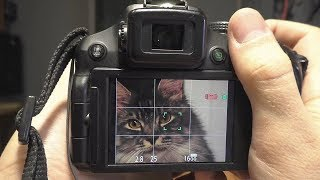 Посылочка от Евгения Матвеева: сломанная фотокамера Panasonic FZ200