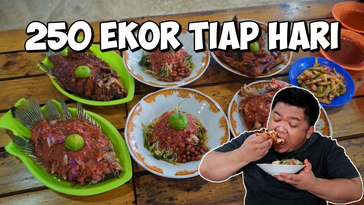 Download 250 EKOR LUDES TIAP HARI di AYAM TALIWANG SASAK TULEN
