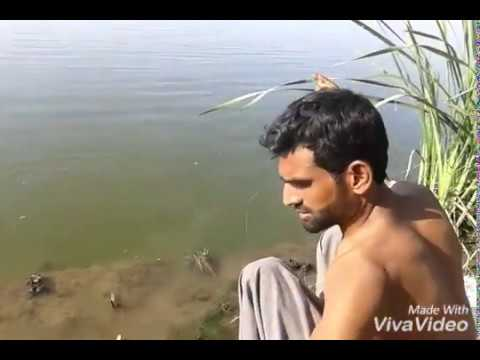 Fishing in pakistan by malik qamar (5kg rahu)