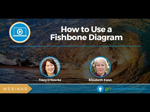 Lean Six Sigma Webinar: How To Use A Fishbone Diagram (aka Cause & Effect Diagram)