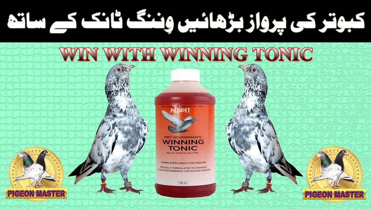 Win with Winning Tonic - YouTube