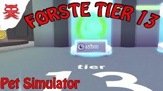 Tier 13 Haustier - Haustier Simulator - Dansk Roblox