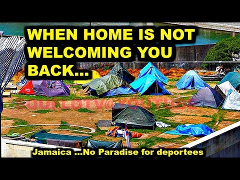 Jamaica No paradise for deportees 69000 On their way