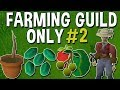 Unlocking The Second Tier of the Farming Guild Will Take 2 Months! Farming Guild Only #2 [OSRS]