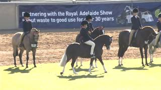 2016 Royal Adelaide Show Main Arena LIVE - Day 1