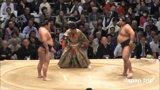 豪栄道 vs 高安の取組。 2016大相撲春場所6日目。