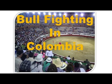 Bull Fighting in Cartagena Colombia