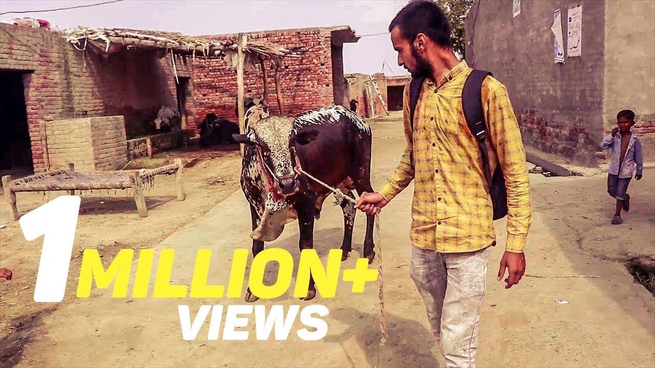 Download Bachra Bhag Gya | Bakra Eid 2019 Vlog