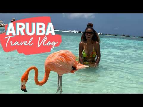 Birthday Trip to Aruba   Travel Vlog   Imani Murray