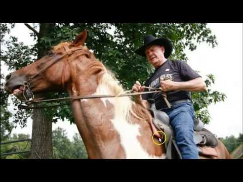 Follow Up To Roy Moore Riding A Horse Video - Comments & Observations