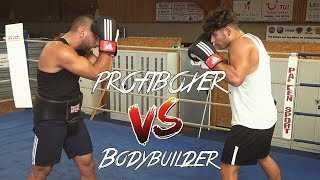 BODYBUILDER vs. PROFIBOXER im RING l Yavi TV