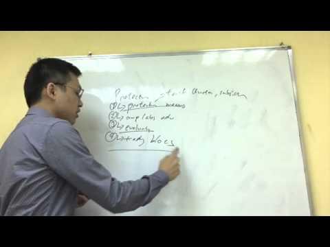 IB Economics Exam Secrets for Protectionism