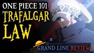 Trafalgar Law Explained (One Piece 101)
