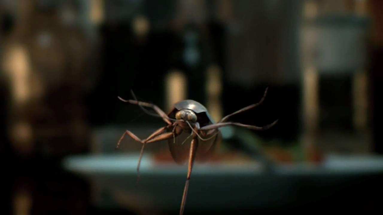 Cockroach Trailer