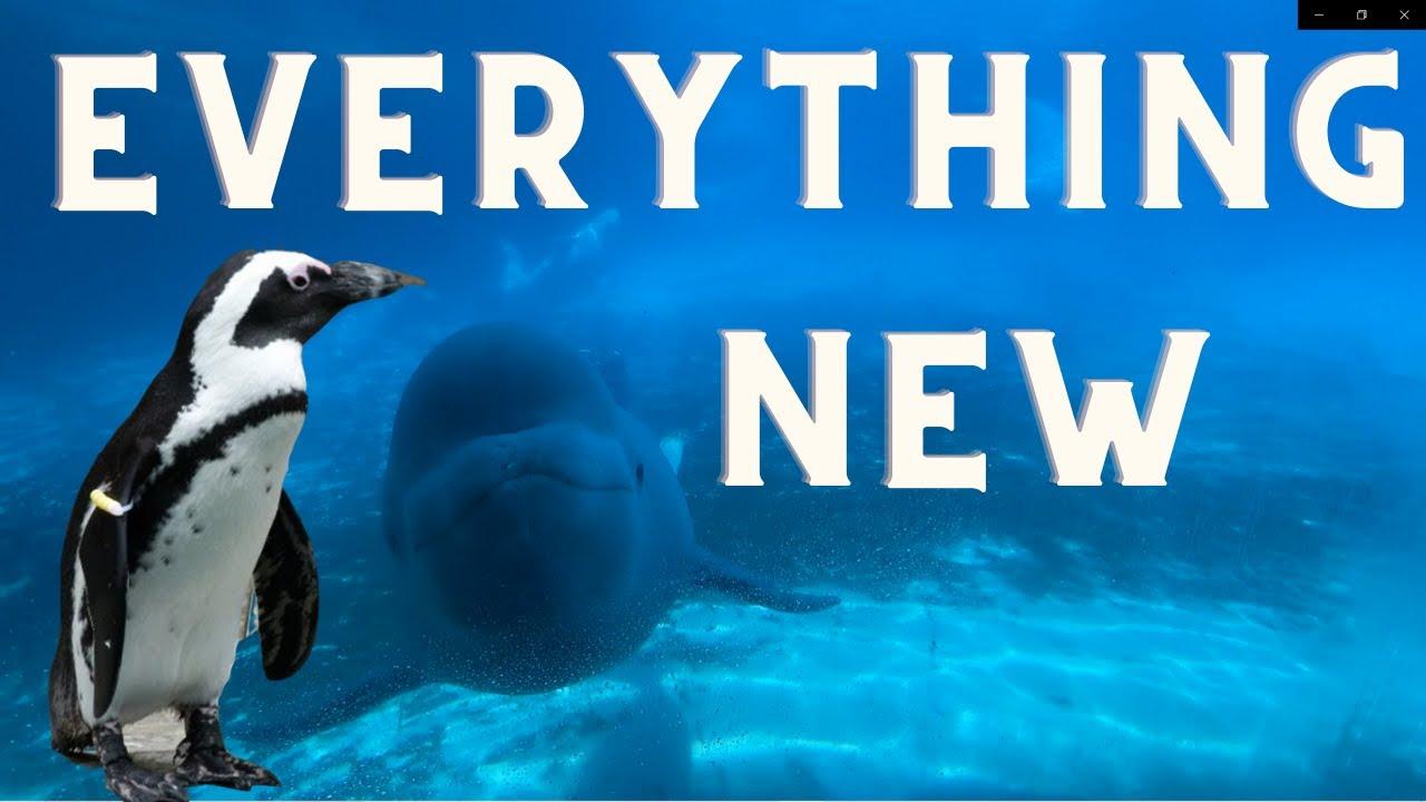 Marineland Everything New 2020