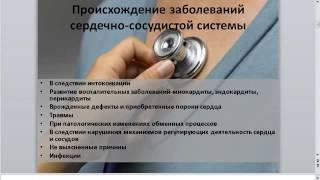 урок 9 Основные программы  для коррекции болезней ссс