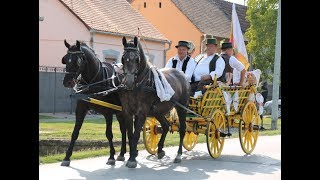 XXIII. Piškorevački sokaci - Piškorevci 2017