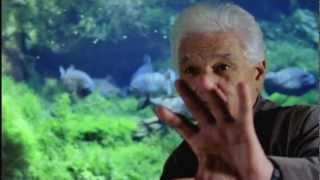 Safaa Fathy - DERRIDA, ANDERSWO (DVD-Trailer)
