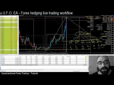 Forex hedging strategy math based for MT4: 'u.U.F.O.' EA robot - Workflow - 1/3 Tutorial