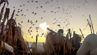 """First Crack"": An Epic 3 Days of Snow Goose Hunting in Arkansas - Fowled Reality"