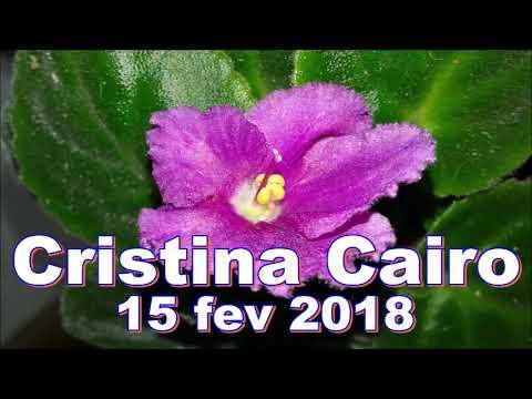 Cristina cairo 15/02/2018 - Problemas de Cabeça