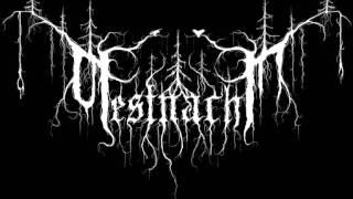 PestNacht - Wenn das menschliche Dasein bricht...