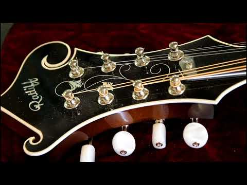 The R-5 mandolin.....Serial number # 1181
