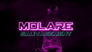 "Clip MOLARE ""Sauvagement"" Officiel HD"