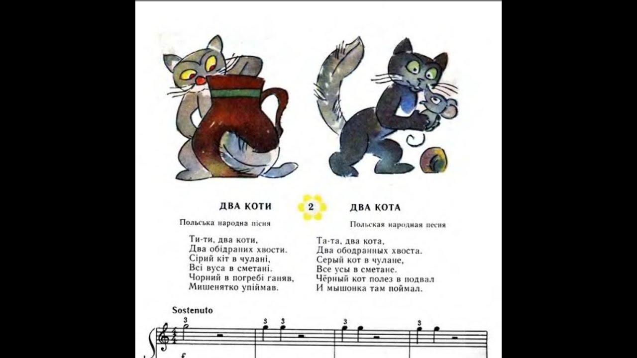 Песни котов фото