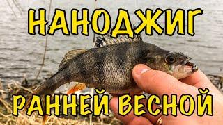 Наноджиг ранней весной Микровеса сделали рыбалку