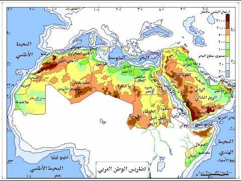 كتاب العالم العربي المعاصر pdf
