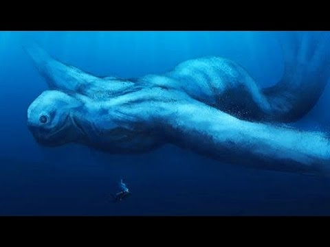 5 Most Mysterious Unidentified Sea Creatures Ever Found