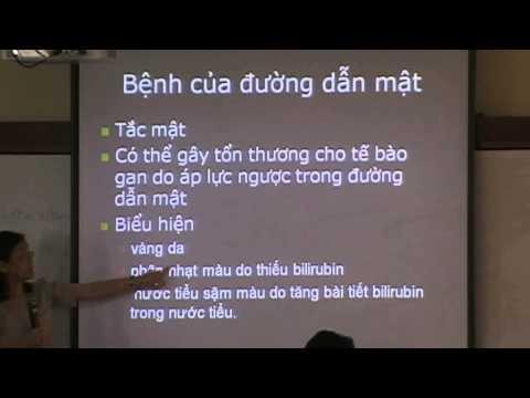 Sinh lý bệnh tiêu hóa part 2